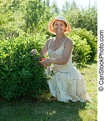 Mature woman cutting shrubbery at garden