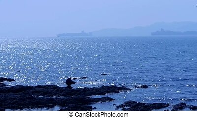 A man on rocks reef.cargo ship