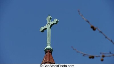 Qingdao Catholic Churchs Cross tree