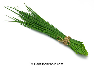 Herb Series Chives - Fresh Chives, tied in a bunch, isolated...