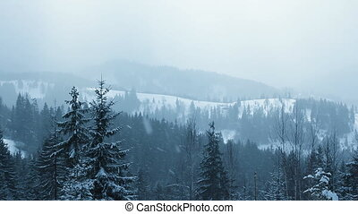 Snow Falling in Carpathians (Full HD)