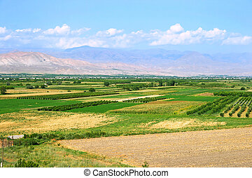 Landscape in Armenia - Landscape with gardens, oachards in...