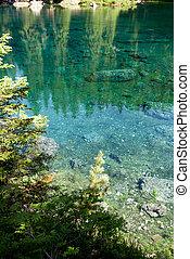 Carezza Lake - reflections on Carezza Lake in Trentino Alto...