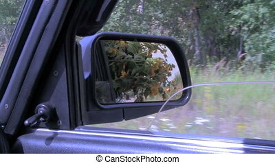 flowers in the car, visible in the rearview mirror