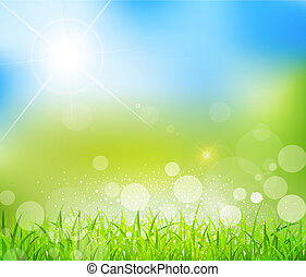 natural green background with sun and grass