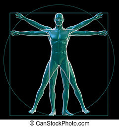 Vitruvian man on black - 3D Rendering of a Vitruvian man on...