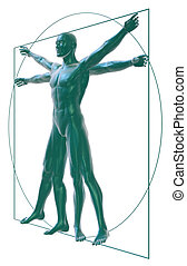 Vitruvian man perspective-white - 3D Rendering of a...