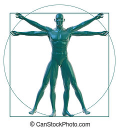 Vitruvian man on white - 3D Rendering of a Vitruvian man on...