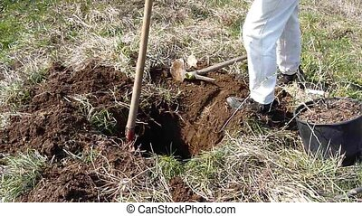digging - man working in the garden with a shovel