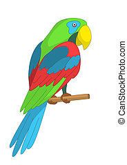 Parrot on a pole - Clever speaking colored parrot sits on a...