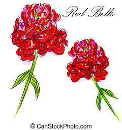Red Bells Flower