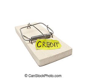 Debtors prison concept - Mousetrap with bait credit inside...