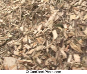 wood branches chips fuel - Organic biofuel wood branches...