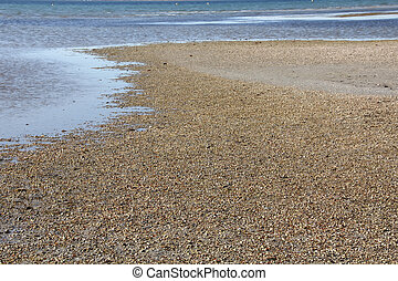 Beaches formed by thousands of small shells
