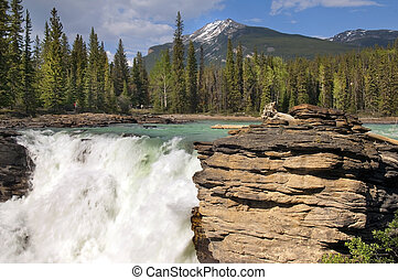 Falls in the rugged mountain river in the Canadian Rockies