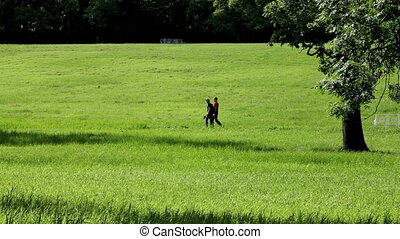 Walking through a meadow - Two men are on the slope of the...