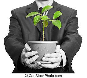 homem negócios, planta, pote, segurando