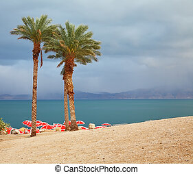 Winter on the Dead Sea Red umbrellas and purple thunderheads...