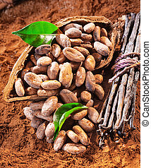 Cacao beans and vanilla - Cacao beans in a shell with a...