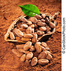 Cocoa Beans with a fresh green leaf on a powdered cocoa...