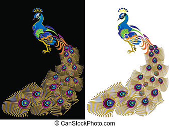 color peacoc - Peacock on a black and white background.