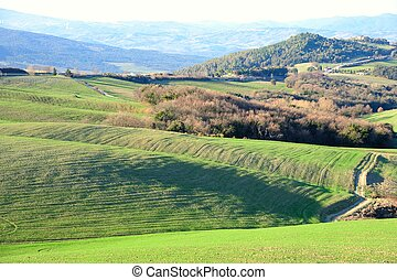 Green Hills - Scenic view of typical Tuscany landscape,...