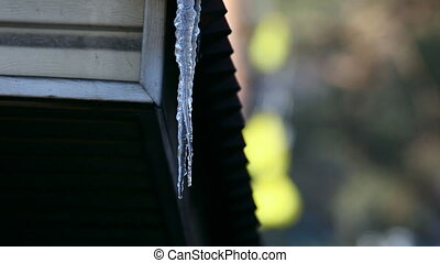 Icicle. - Spring icicles on the roof