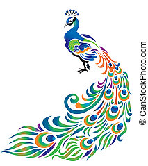 Peacock on white background.