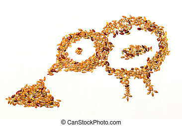 Seeds bird eating on white background