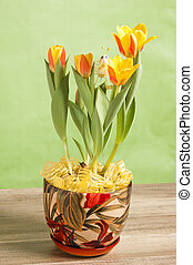 It is red yellow tulips, a close up