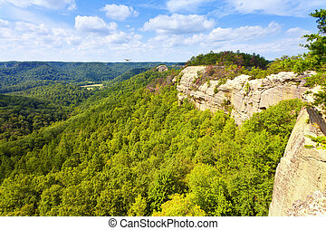 Ridge Top View - View from the ridge top at Red River Gorge...