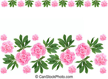 Peony flower pattern - Pattern of bright pink peony flower...