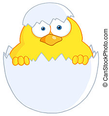 Yellow Easter Chick In A Shell - Surprise Yellow Chick...