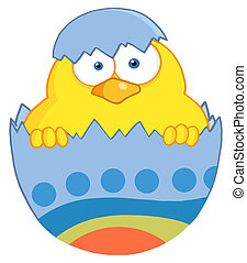 Yellow Easter Chick In A Blue Shell - Surprise Yellow Chick...