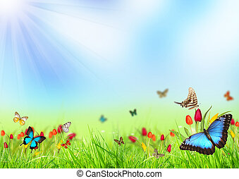 Spring background - Beautiful spring meadow with butterflies