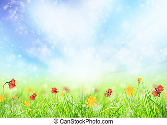 Spring background - Beautiful spring meadow
