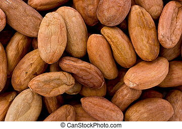 Raw Cacao Beans Theobroma cacao - Background texture of...