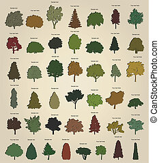 Set of retro trees Vector illustration