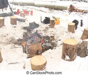 fire heat stumps winter