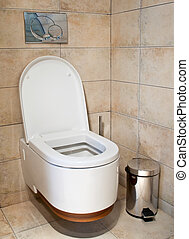 This is a closeup of a toilet