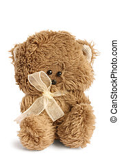 Cute teddy on white background