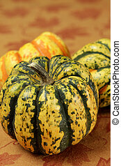 tiger striped pumpkin