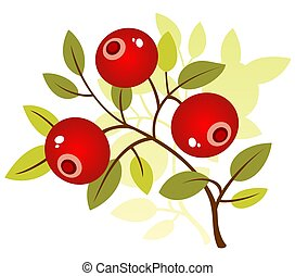 cranberry - Stylized cranberry isolated on a white...