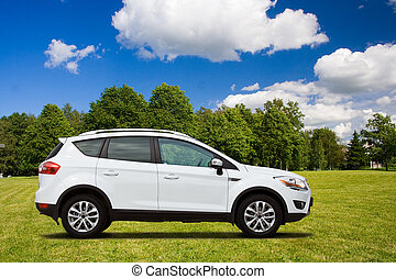A white crossover - A white SUV int the green field
