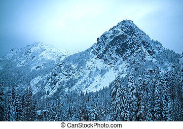 Alpental at Snoqualmie pass Winter Mountain Landscape - Snow...
