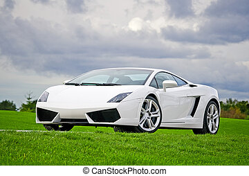 Supercar in golf club - White high performance supercar in a...