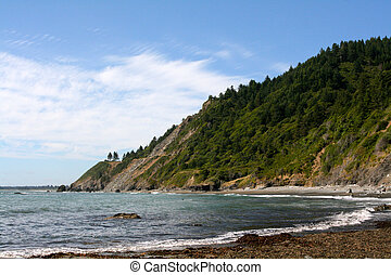 Beach in Northern Califonia - the picture of a Beach near...