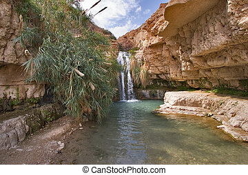 Waterway. - A falls and the river in reserve on the Dead Sea...