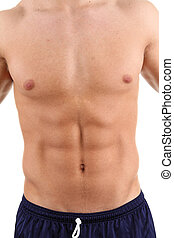 Abdomen - Man with chest and abdomen
