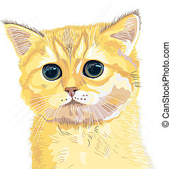 vector closeup sketch cute lilac British kitten - closeup...